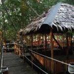 Gazebo di wisata mangrove trc