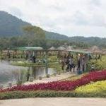taman bunga pemancingan poyotomo
